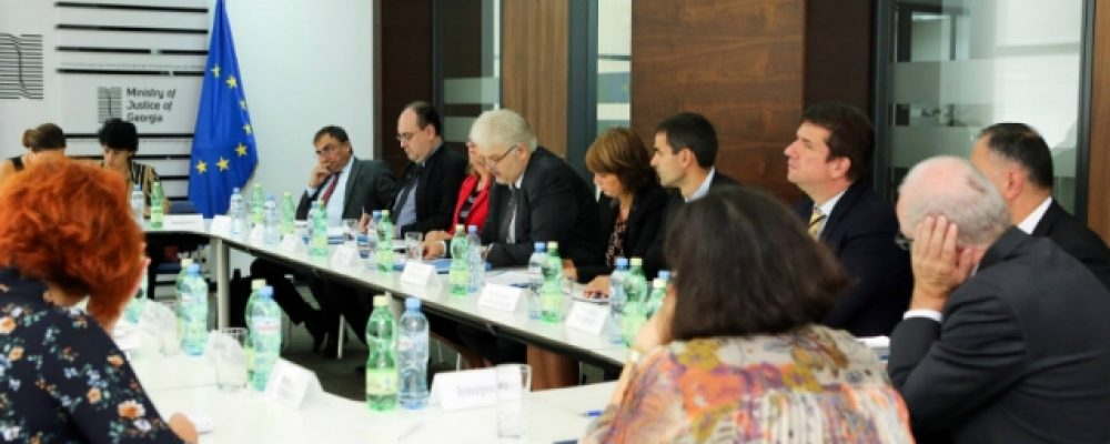 Council of Europe Anti-Torture Committee Ends Georgia Visit